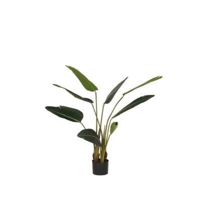 LABEL51- Kunstplant_Strelitzia_70x70x100_cm_Vooraanzicht